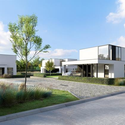 Project For sale Sint-Idesbald